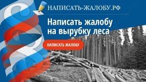 Как написать жалобу на незаконную вырубку леса